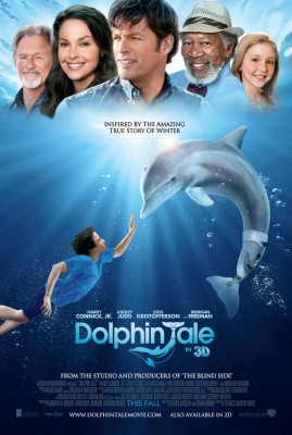 A Touching Dolphin's Tale