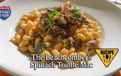 The Beachcomber's Spinach Truffle Mac