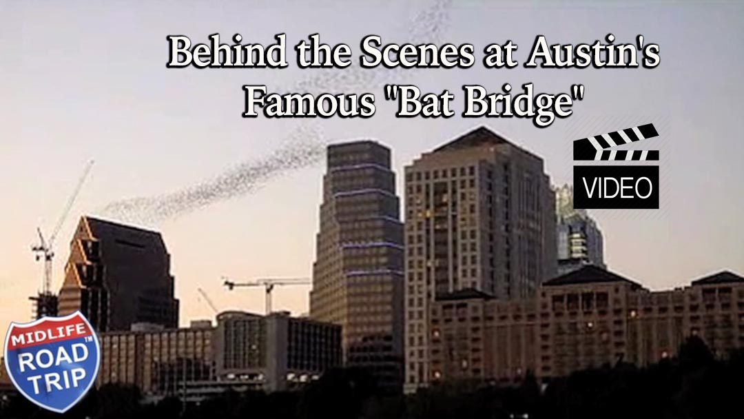 "Behind the Scenes at Austin's Famous ""Bat Bridge"""