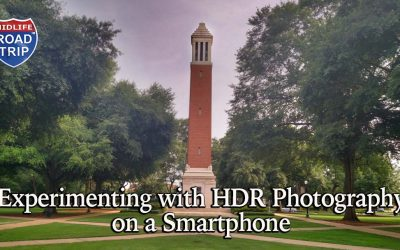 Experimenting with HDR Photography on a Smartphone