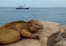 Galapagos Photo Album