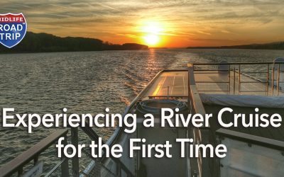 Experiencing a River Cruise for the First Time