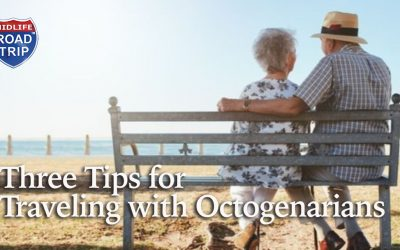 Multigenerational Travel: Three Tips for Traveling With Octogenarians