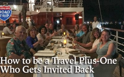 How to be a Travel Plus-One Who Gets Invited Back