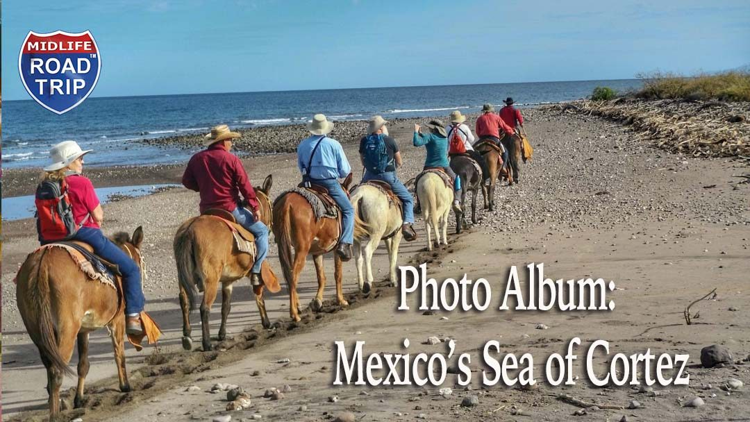 Photos from my UnCruise Adventure on Mexico's Sea of Cortez